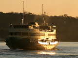 Passenger Ferry at Dawn, Sydney Harbor, Australia Photographic Print by David Wall