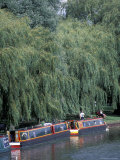 Barge on River Ouse, Ely, Cambridgeshire, England Photographic Print by Nik Wheeler
