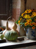 Gourds and Flowers in Kitchen in Chateau de Cormatin, Burgundy, France Photographic Print by Lisa S. Engelbrecht