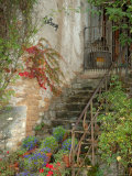 Steps to La Forge Home, Burgundy, France Photographic Print by Lisa S. Engelbrecht