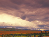 Peak Fall Colors, Denali National Park, Alaska, USA Photographic Print by Stuart Westmoreland