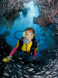 Minnow Caves and Scuba Diver, Key Largo, Florida, USA Photographic Print by Michele Westmorland
