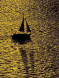 Sailing at Sunset, Ft Myers, Florida, USA Photographic Print by Maresa Pryor