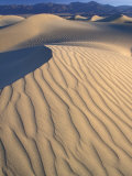 Mesquite Flats Sand Dunes with Wind Ripples at Sunrise, Death Valley National Park, California, USA Photographic Print by Jamie & Judy Wild