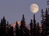 Moonrise in Early Winter, Chugach Range, Alaska, USA Photographic Print by Paul Souders