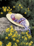 Hat and Daffodils, Louisville, Kentucky, USA Photographic Print by Adam Jones