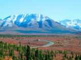 Road Through Park, Autumn, Denali National Park, Alaska, USA Photographic Print by Terry Eggers