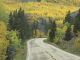 Highway 82 Through Autumn Aspen Trees, San Isabel National Forest, Colorado, USA Photographic Print by Adam Jones
