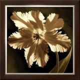 Parrot Tulip I Posters by Caroline Kelly