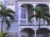 Artist's House, Key West , Florida, USA Photographic Print by Rob Tilley