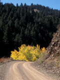 Lemhi Pass, Continental Divide, Lewis and Clark Trail, Idaho, USA Photographic Print by Connie Ricca