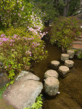 Asticou Azalea Gardens in Northeast Harbor, Mt. Desert Island, Maine, USA Fotodruck von Jerry & Marcy Monkman