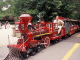 Train and Conductor at Forest Park, St. Louis Zoo, St. Louis, Missouri, USA Photographic Print by Connie Ricca