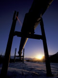 Winter Sunset on the Trans-Alaska Pipeline, Brooks Range, Alaska, USA Photographic Print by Hugh Rose