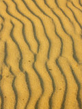 Sand Ripples, Queensland, Australia Photographic Print by David Wall