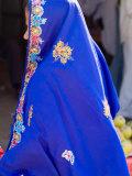 Sari Woman  New Delhi  India