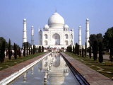 The Taj Mahal, Agra, India Photographie par Bill Bachmann