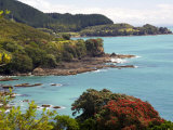 Whitianga Bay, East Cape, New Zealand Photographic Print by David Wall