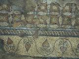 Detail of Roman Mosaic Floor Circa 4th century A.D., Constanta, Romania Photographic Print by Cindy Miller Hopkins