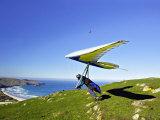 Hang Glider, Otago Peninsula, near Dunedin, South Island, New Zealand Photographic Print by David Wall