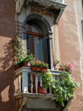Flowers on Villa Balcony, Venice, Italy Photographic Print by Lisa S. Engelbrecht
