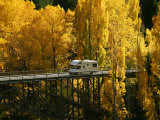 Autumn Colors, Victoria Bridge, Kawarau River, Kawarau Gorge, South Island, New Zealand Photographic Print by David Wall
