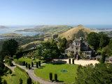 Larnach Castle and Otago Peninsula, Dunedin, New Zealand Photographic Print by David Wall