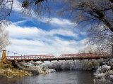 Historic Suspension Bridge, Taieri River, Sutton, Otago, South Island, New Zealand Photographic Print by David Wall