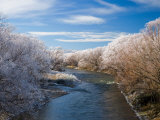Manuherikia River and Hoar Frost, Ophir, Central Otago, South Island, New Zealand Photographic Print by David Wall