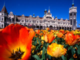 Historic Dunedin Railway Station, New Zealand Photographic Print by David Wall
