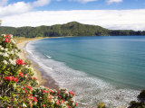 Hicks Bay, Eastland, New Zealand Photographic Print by David Wall