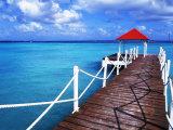Dock in St. Francois, Guadeloupe Fotografisk tryk af Bill Bachmann