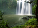Whangarei Falls, Whangarei, Northland, New Zealand Photographic Print by David Wall