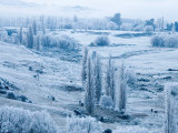 Farmland and Hoar Frost, Fruitlands, near Alexandra, Central Otago, South Island, New Zealand Photographic Print by David Wall