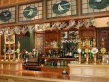 Bar, Careys Bay Hotel, Careys Bay, Port Chalmers, Dunedin, New Zealand Photographic Print by David Wall