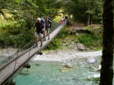 Footbridge, Routeburn Track, near Glenorchy, South Island, New Zealand Photographic Print by David Wall