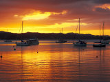 Sunset, Russell, Bay of Islands, Northland, New Zealand Photographic Print by David Wall