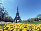 Eiffel Tower, Paris, France Photographic Print by Bill Bachmann