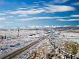Hoar Frost, Otago Central Rail Trail, Hawkdun Ranges, Central Otago, South Island, New Zealand Photographic Print by David Wall