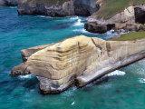 Cliffs at Tunnel Beach, Dunedin, New Zealand Photographic Print by David Wall