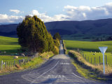 Farmland near Balclutha, South Otago, South Island, New Zealand Photographic Print by David Wall