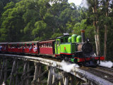 Puffing Billy Steam Train, Dandenong Ranges, near Melbourne, Victoria, Australia Photographic Print by David Wall