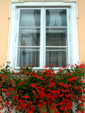 Flowers in Window Box, Lower Town, Zagreb, Croatia Photographic Print by Lisa S. Engelbrecht