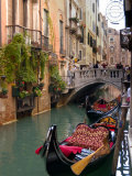 Gondolas Moored along Grand Canal, Venice, Italy Photographic Print by Lisa S. Engelbrecht