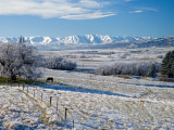 Hoar Frost and Farmland near Poolburn, Central Otago, South Island, New Zealand Photographic Print by David Wall