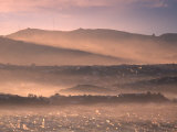 Early Morning over Dunedin and Otago Peninsula, New Zealand Photographic Print by David Wall