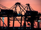 Container Cranes, Port of Auckland Photographic Print by David Wall