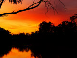 Sunrise, Murray River, Moama, New South Wales, Victoria, Australia Photographic Print by David Wall
