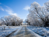 Hoar Frost near Oturehua, Central Otago, South Island, New Zealand Photographic Print by David Wall