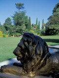 Bronze Lion Statue, Botanical Gardens, Sochi, Russia Photographic Print by Cindy Miller Hopkins